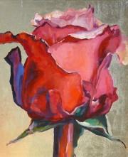 eine rose ist eine rose ist eine rose osho times. Black Bedroom Furniture Sets. Home Design Ideas